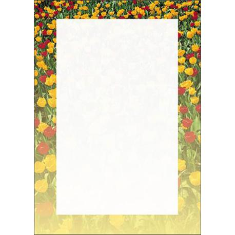 Arkusze barwne A4 Tulipany 100g (50)-6751