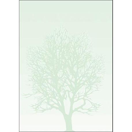 Arkusze barwne A4 Drzewo 100g (50)-6756